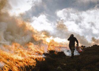 Help ban grouse moor burning